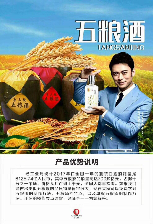 深圳唐三镜酿酒设备